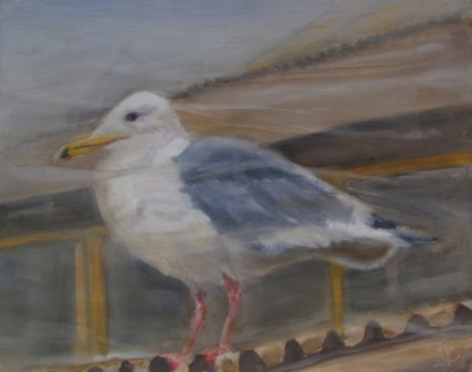gull painting oil Canada Kathy Guenkel bird